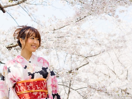 japanese kimono woman and cherry blossoms